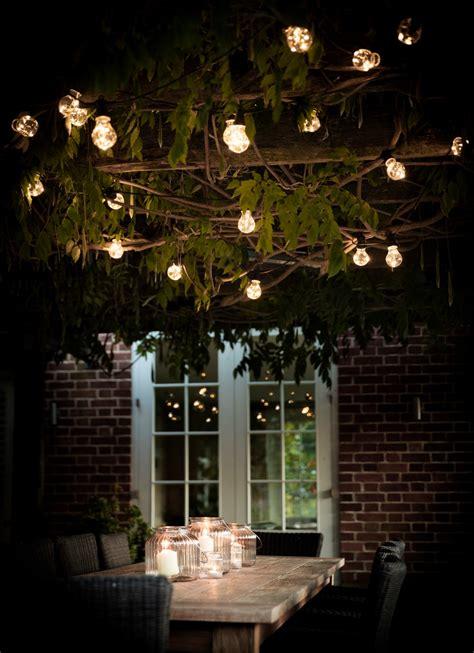 garden glow  illuminating outdoor