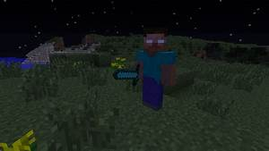 DOWNLOAD MINECRAFT HEROBRINE MOD 1.7.2 SKYDAZ - Wroc?awski ...