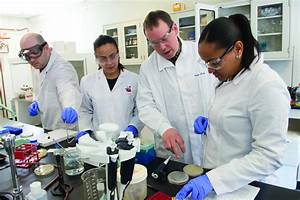 Necc U2019s Lab Science Program Receives Educational Endorsement