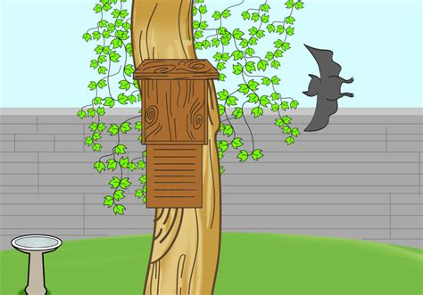 how to attract bats to your garden 5 steps with pictures