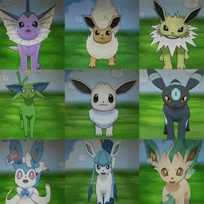 Shiny Eeveelution Hunt Hello Pokemon Everyone Hey