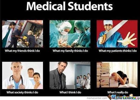 Medical Meme - medical student funny meme www pixshark com images galleries with a bite