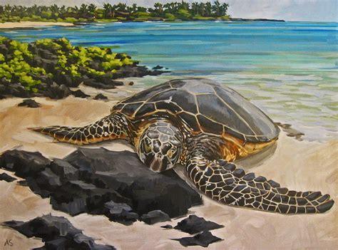 Hawaiian Green Sea Turtles Aka Honu