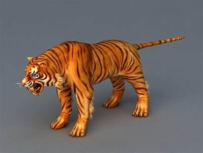 3d Tiger China South Cadnav 3ds