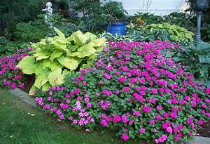 Shady places make for creative spaces how to garden in shade for Flowers for shade gardens