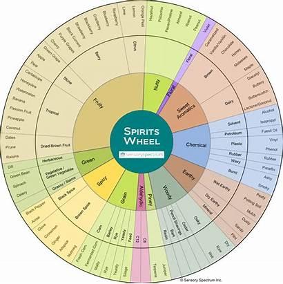 Wheel Spirits Flavor Analysis Descriptive Sensory Spectrum