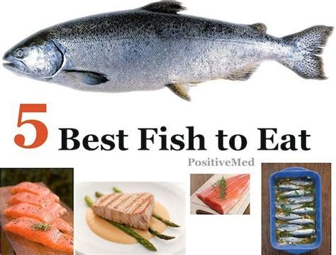 fish  eat food healthy foods  eat fatty