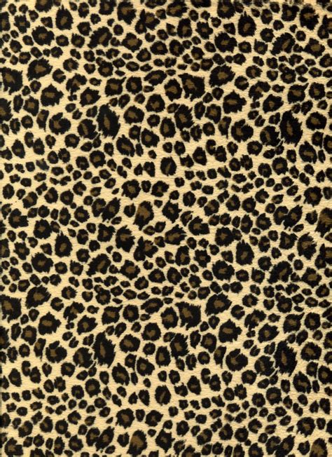 Free Animal Print Wallpaper Background - leopard backgrounds wallpaper cave