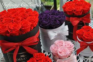 Ewige Rosen Box : ewige rose in glasglocke konservierte rosen in der box ~ Eleganceandgraceweddings.com Haus und Dekorationen
