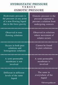 Diagram Of Hydrostatic Pressure