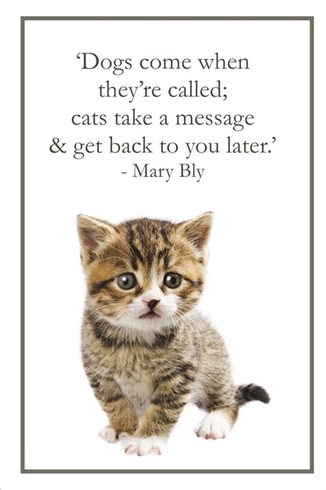 Quotes About Cat And Dog 106 Quotes