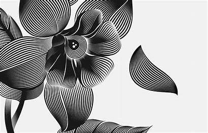 Illustrator Disegni Adobe Strumento Fusione Complessi Blend