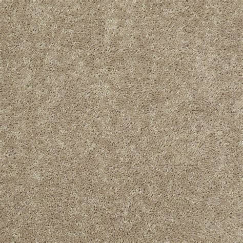 shop shaw stock sand textured indoor carpet at lowes - Shaw Flooring Stock