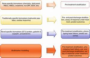 Biomarker-Guided Therapy for Chronic Heart Failure ...