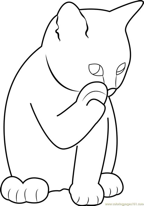 ginger cat licking  paw coloring page  cat coloring pages coloringpagescom