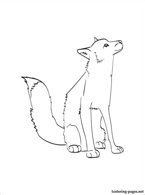 animals fox coloring sheet coloring pages