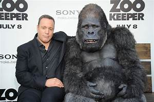 zookeeper kevin james and gorilla - blackfilm.com/read ...