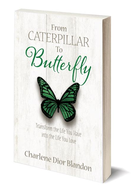 Thin Book Template by From Caterpillar To Butterfly Book Paperback