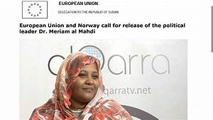 European Union and Norway call for release of the ...