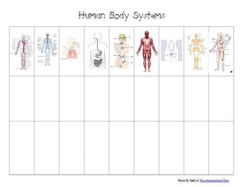 Human Body Systems Chartpdf  Google Drive  Printables Of All Kinds  Pinterest  D, Google