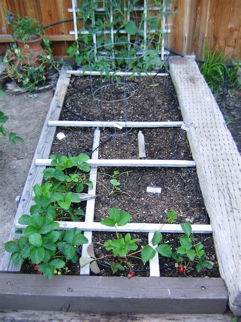 Square Foot Gardening by 3 Steps To The Vegetable Garden Part Three