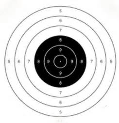 Printable Rifle Targets PDF