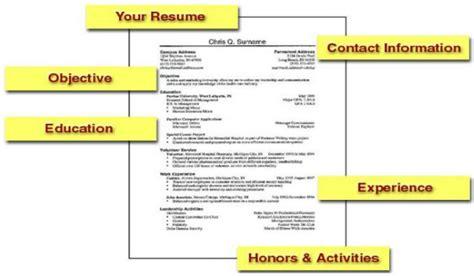 Lying About Associate Degree On Resume by Lies Abound On Resumes Cvs In Difficult Employment Market