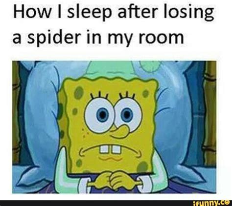 Spongebob Internet Memes - this is hilarious meme spider and memes