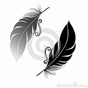 Dessin De Plume Facile : oiseau abstrait de plume images stock image 34242964 ~ Melissatoandfro.com Idées de Décoration