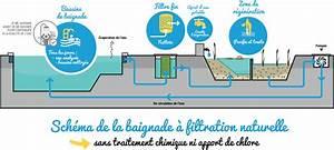 Filtration Biologique Pour Bassin A Poisson : pour une piscine naturelle dans l co quartier de l arsenal ~ Premium-room.com Idées de Décoration