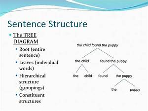 Simple Puppy Diagram