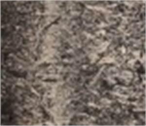 Eternit Asbest Erkennen : linoleum mit asbest so erkennen sie es ~ Orissabook.com Haus und Dekorationen