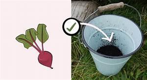 Was Darf Nicht In Den Trockner : was auf den kompost darf und was lieber nicht dort landen sollte altes ~ Buech-reservation.com Haus und Dekorationen