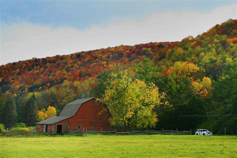 image gallery allegheny national forest kinzua