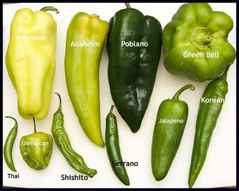 benefits of having hot peppers 45 best chilli chili peppers images on pinterest
