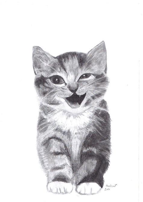 images  drawings  paintings  pinterest