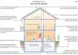 Mittel Gegen Rost : mittel gegen schimmel an der wand schimmelpilzentferner ~ Michelbontemps.com Haus und Dekorationen