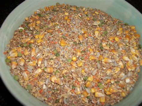 Lca Database Animal Feed Production