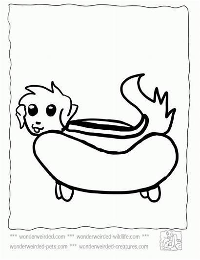 Coloring Dog Weird Cartoon Sheets Cachorro Quente