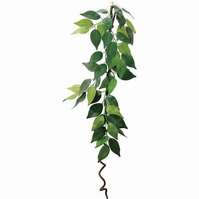 Vines Vine Hanging Plant Decoration Artificial Vivarium