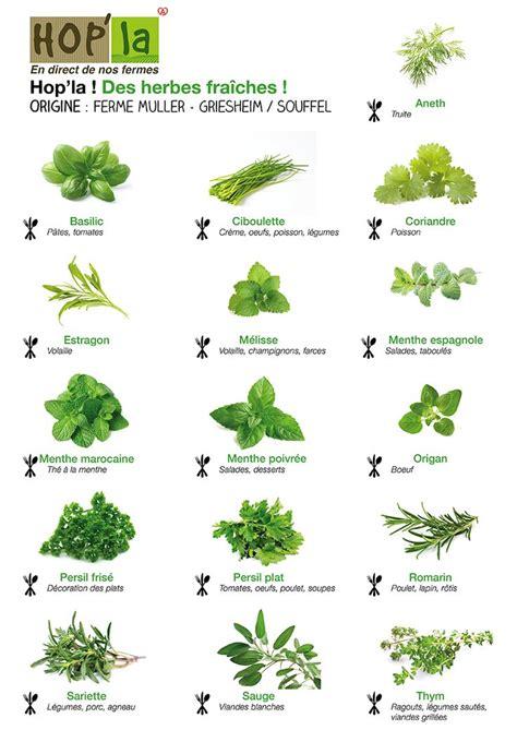 herbes de cuisine les herbes de cuisine 28 images comment utiliser les