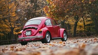 Beetle Volkswagen Autumn Wallpapers 1938 Cars Romantic