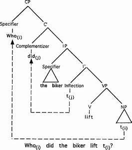 Tree Diagram Illustrating Wh