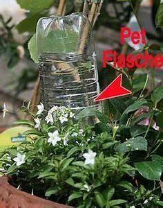 Blumen Bewässerung Im Urlaub : die besten 25 blumen aus plastikflaschen ideen auf pinterest ~ Orissabook.com Haus und Dekorationen