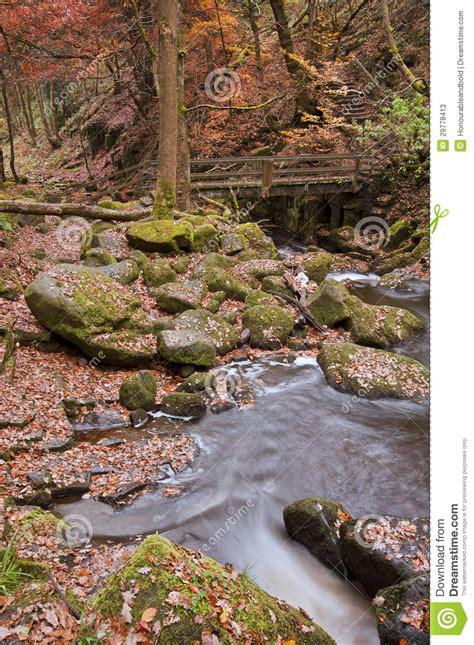autumn  padley gorge  peak district stock