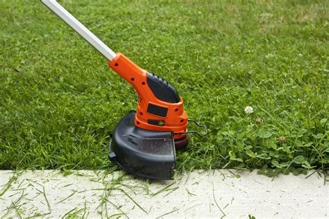 weed wacker trimmer grass sidewalk training string trimming istockphoto garden brushcutter overgrown whacker tools trimmers whackers guide maintenance yard flowers