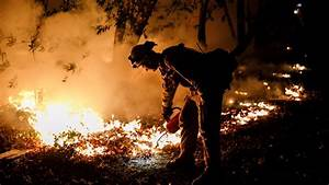 PG&E says private power line might have sparked deadly ...