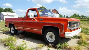 1973 Chevrolet C20 Pickup Base 7 4l For Sale  Photos