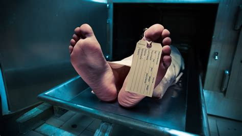 dead bodies probably istock myths true think