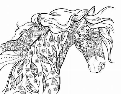 Horse Coloring Adults Pages Printables
